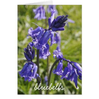 Bluebells notecard