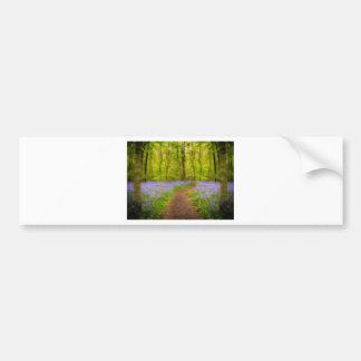 Bluebells path bumper sticker