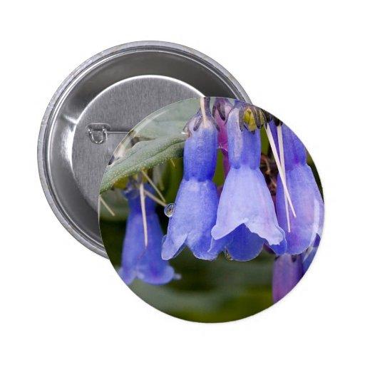 Bluebells Pins