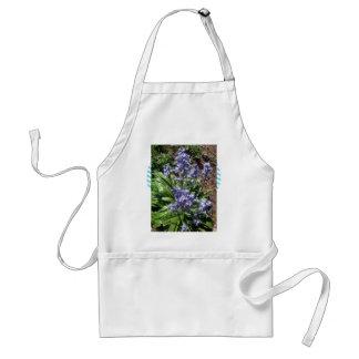 Bluebells púrpuras en la plena floración delantal