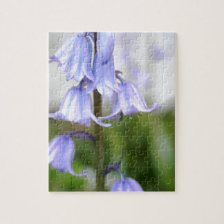 Bluebells Puzzle