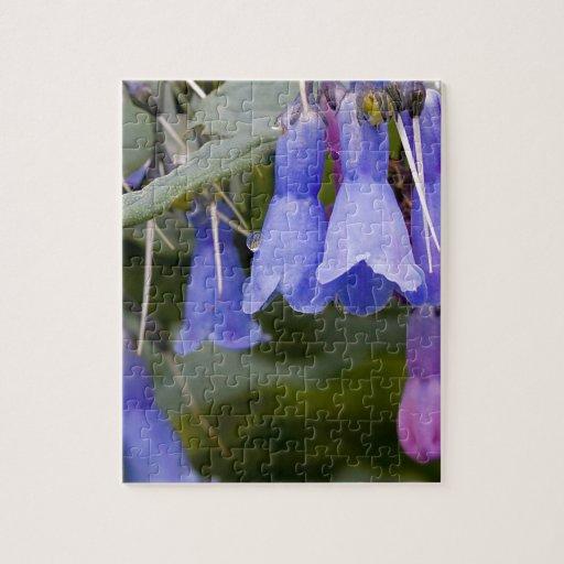 Bluebells Rompecabeza Con Fotos