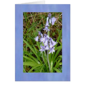 Bluebells Standing Tall Card