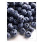 Blueberries 2 postcard