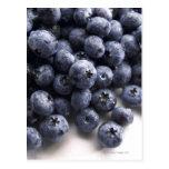 Blueberries 2 postcard