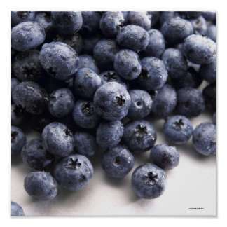 Blueberries 2 poster