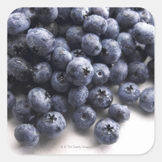 Blueberries 2 square sticker