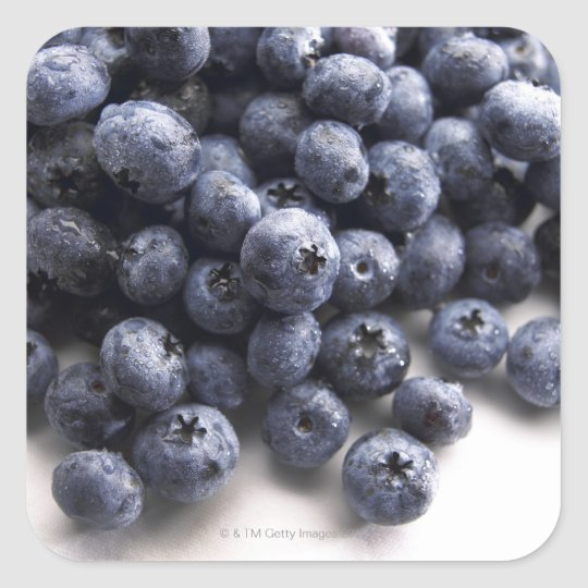 Blueberries 2 square sticker