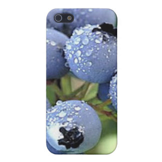 Blueberries, A Summertime Fruit iPhone 5 Cover