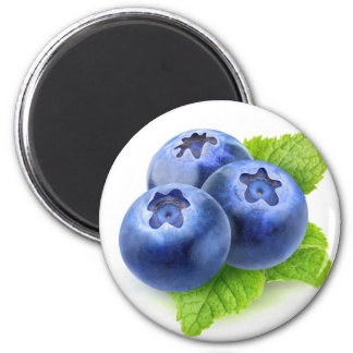 Blueberries and mint magnet