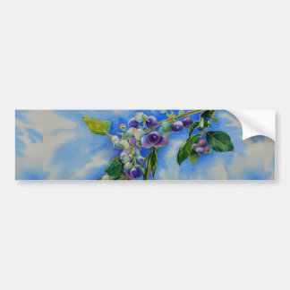 Blueberries Bumper Sticker