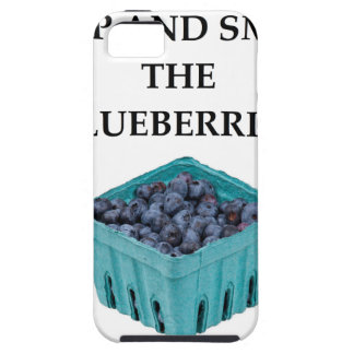 BLUEBERRIES iPhone 5 CASES