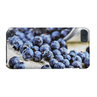 Blueberries iPod Touch 5G Cases