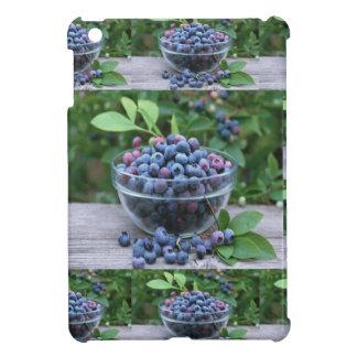 Blueberries Chefs healthy cuisine Breakfast Salads iPad Mini Case