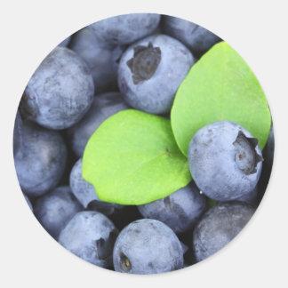Blueberries Classic Round Sticker