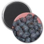 Blueberries CricketDiane Art, Design & Photography 2 Inch Round Magnet