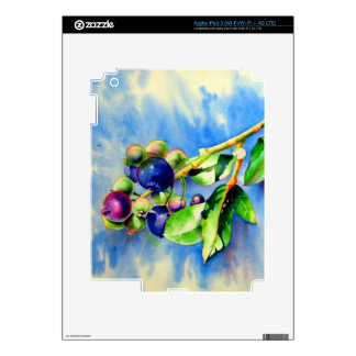 Blueberries Decal For iPad 3