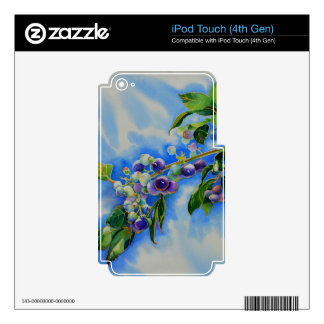 Blueberries Decals For iPod Touch 4G