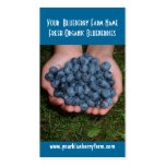 Blueberries for you to eat! Double-Sided standard business cards (Pack of 100)