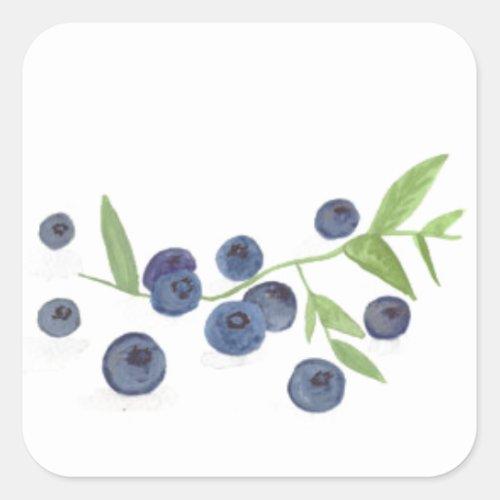 Blueberries fruit kitchen decor square sticker