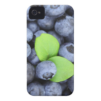 Blueberries iPhone 4 Case-Mate Case