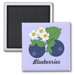 Blueberries Magnet