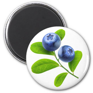 Blueberries Magnet