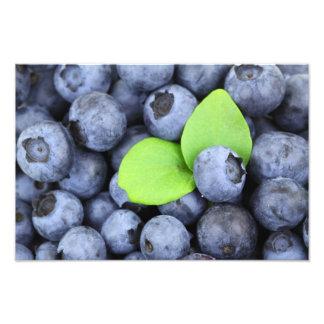 Blueberries Photo Print