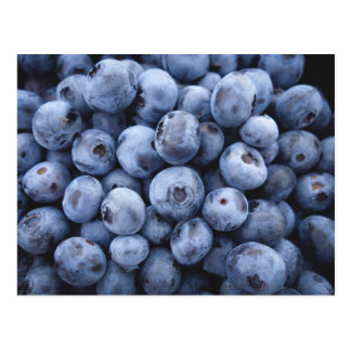 BLUEBERRIES PHOTOGRAPHY FRUITS HEALTHY POSTCARD