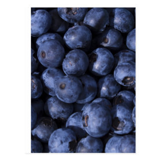 Blueberries! Postcard