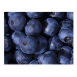 Blueberries! Postcards