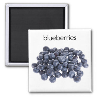 Blueberries Refrigerator Magnet