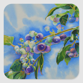 Blueberries Square Sticker
