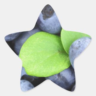 Blueberries Star Sticker