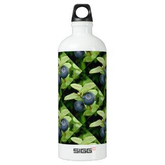 Blueberries, Vaccinium ovalifolium Aluminum Water Bottle