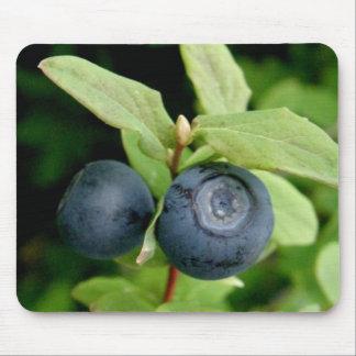 Blueberries, Vaccinium ovalifolium Mouse Pad