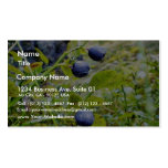 Blueberries With Green Leaves Double-Sided Standard Business Cards (Pack Of 100)