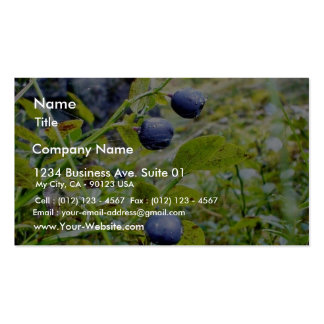Blueberries With Green Leaves Business Card Templates