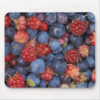 Blueberry Blue Colorful Fruit Food Sweet Destiny Mouse Pad