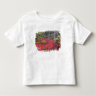 Blueberry bushes and pines toddler t-shirt