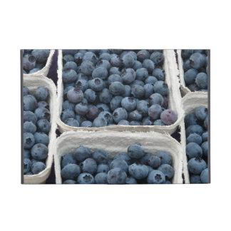 Blueberry Crates iPad Mini Case