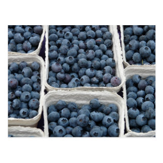 Blueberry Crates Postcard