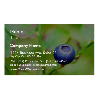 Blueberry Double-Sided Standard Business Cards (Pack Of 100)