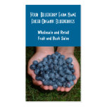Blueberry Farm or Sales Double-Sided Standard Business Cards (Pack Of 100)