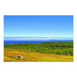 blueberry fields forever photo print