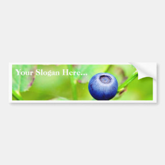 Blueberry In The Forest Bumper Sticker