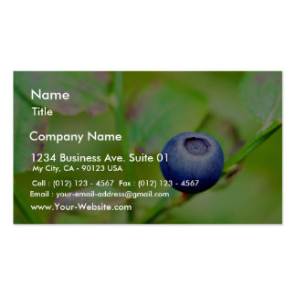 Blueberry In The Forest Double-Sided Standard Business Cards (Pack Of 100)