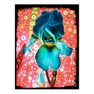 Blueberry Iris Postcard