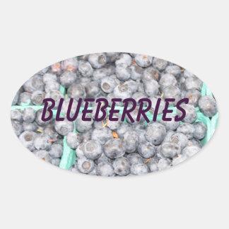 Blueberry Jelly Jam or Preserves Jar Sticker