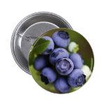 blueberry lover 2 inch round button
